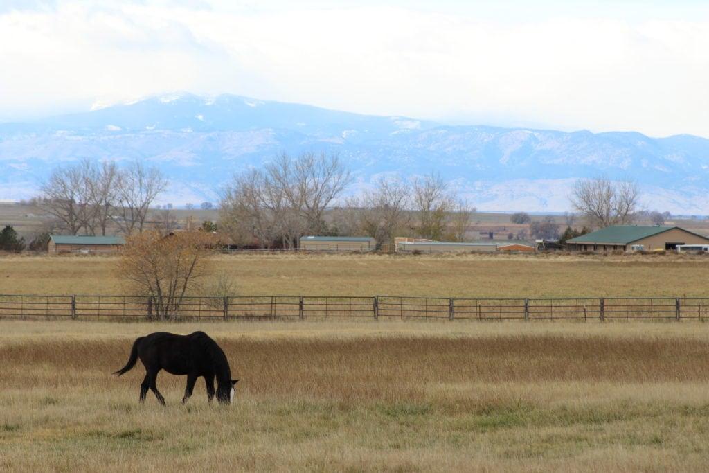 view of Ellerman Ranch